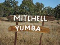Yumba, Mitchell